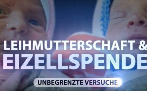 Behandlung der Unfruchtbarkeit, Schritt für Schritt : Leihmutterschaft und Eizellspende