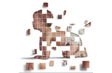 """Ein weiteres IVF """"Drei-Eltern""""-Baby, das in Europa geboren wurde, mittels Spindel-Transfertechnik"""