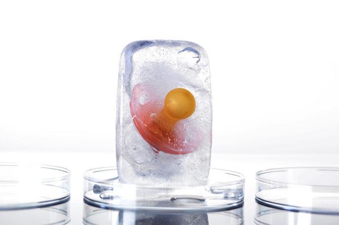 """Kümmere dich um deine Zukunft noch heute : Kryokonservierung  von Eizellen bei"""" BioTexCom"""""""