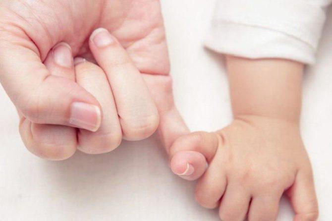 Was ist effektiver: Gebärmutter-Transplantation oder Aufbau des Endometriums?